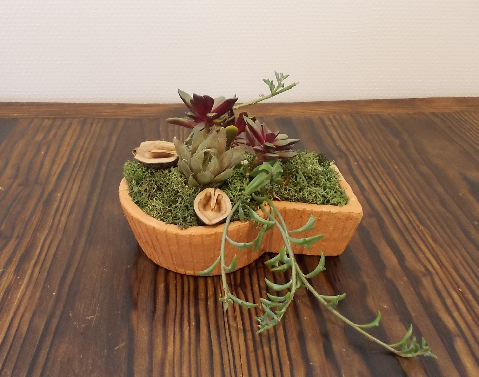古墳形鉢&寄せ植えづくり開催!イメージ2
